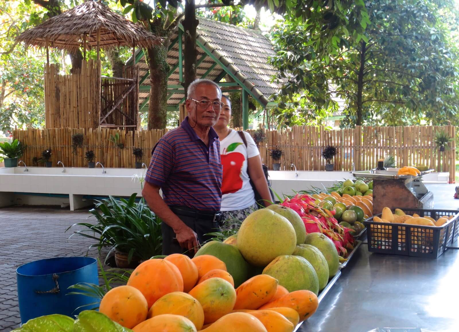 Organic fruit in Thailand