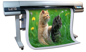 Indoor printer, ����ͧ������Թ���좹Ҵ�˭�