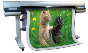 เครื่องพิมพ์หน้ากว้าง Hijet Indoor, อิงค์เจ็ทหน้ากว้าง,อิงค์เจ็ทขนาดใหญ่,เครื่องพิมพ์อิงค์เจ็ท,inkjet indoor,เครื่องพิมพ์หน้ากว้าง,เครื่องพิมพ์ขนาดใหญ่,Largeformat printer
