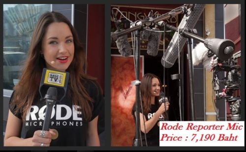 Reporter mic