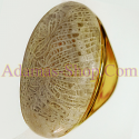 Diamond Gems Gemstones Natural Coral Fossil Ring Rings Jewelry Fashion Fine ����ͧ��дѺ �Թ ���� ��ǹ �á��ѧ ��ʫ�� �����ҵ� �� �ͧ ��������� �Թ ��⪤ ���� ��� �Ҥ�