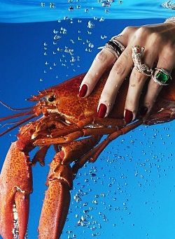 แหวนสุดหรู แหวนรูปสัตว์ แหวนค็อกเทลรูปสัตว์ แหวนรูปปลาหมึก แหวนรูปกระต่าย แหวนรูปหมา แหวนรูปกบ แหวนรูปนก แหวนรูปนกแก้ว แหวนแฟชั่น แหวนเพชรรูปสัตว์ แหวนแฟชั่น แหวนแฟชั่นรูปสัตว์ แหวนรูปเสือ แหวนดารา แหวนยอดฮิต แหวนยอดนิยม แหวนดีไซน์ เครื่องประดับรูปสัตว์