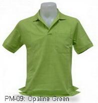 เสื้อโปโล,เสื้อโปโลสีเขียวนม,Polo Shirt_opaline green,เสื้อโปโลสำเร็จรูป,เสื้อโปโลผู้ชาย,เสื้อโปโลเนื้อผ้าค็อตต้อน,เสื้อยืดพนังาน,เสื้อโปโลบริษัท,เสื้อโปโลยูนิฟอร์ม,เสื้อโปโลปักโลโก้,เสื้อโปโลพรีเมี่ยม
