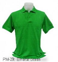 เสื้อโปโล,เสื้อโปโลสีเขียวสด,Polo Shirt_ emeral green,เสื้อโปโลสำเร็จรูป,เสื้อโปโลผู้ชาย,เสื้อโปโลเนื้อผ้าค็อตต้อน,เสื้อยืดพนังาน,เสื้อโปโลบริษัท,เสื้อโปโลยูนิฟอร์ม,เสื้อโปโลปักโลโก้,เสื้อโปโลพรีเมี่ยม