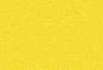 แจ็กเก็ต สีเหลือง