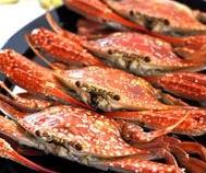 Bangburd Crab