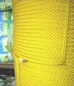 เชือกไนล่อนสีเหลือง