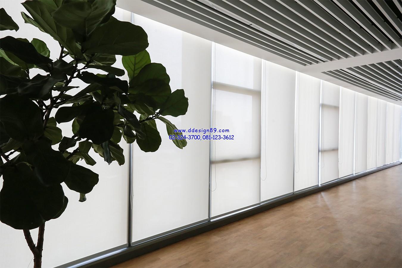 ม่านม้วนแบบ Sunscreen กรองแสงได้ 60-70% ติดในสำนักงานได้รับความนิยมอย่างมาก