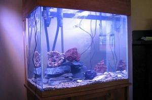 ตู้ปลา กระจกใสพิเศษ