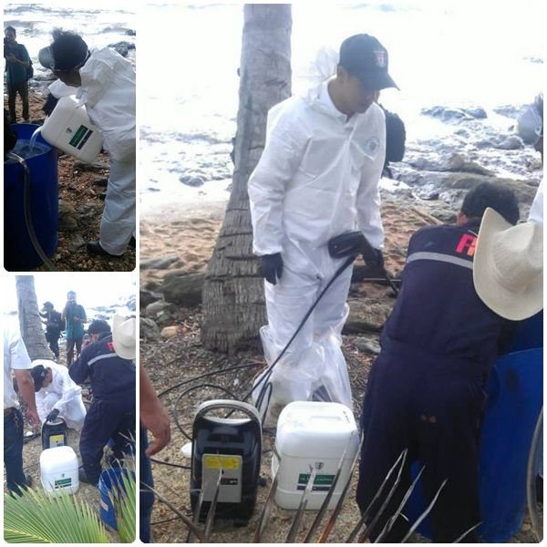 KEEEN การกำจัดน้ำมันด้วยวิธีทางชีวภาพ ปลอดภัยและเป็นมิตรกับสิ่งแวดล้อม (กรณีคราบน้ำมันที่อ่าวพร้าว เกาะเสม็ด, ป่าชายเลนบ้านแหลมกรวด กระบี่)
