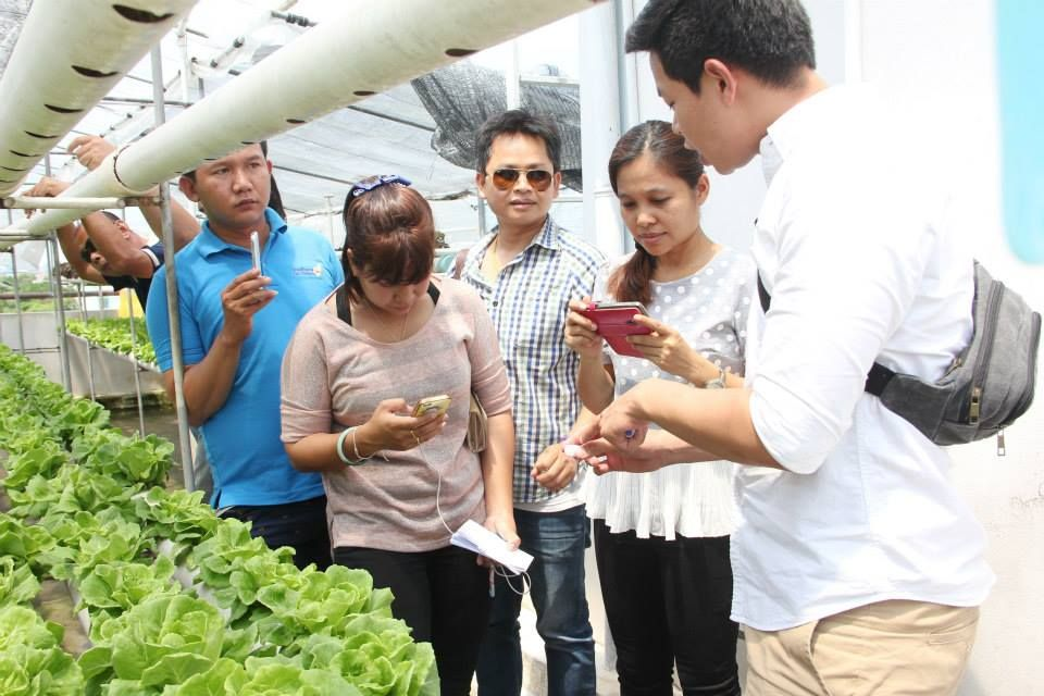 เรียนการปลูกผักไฮโดร อบรมปลูกผักไฮโดร การปลูกผักไฮโดรโปนิกส์ ผักไฮโดร การปลูกผักไร้ดิน