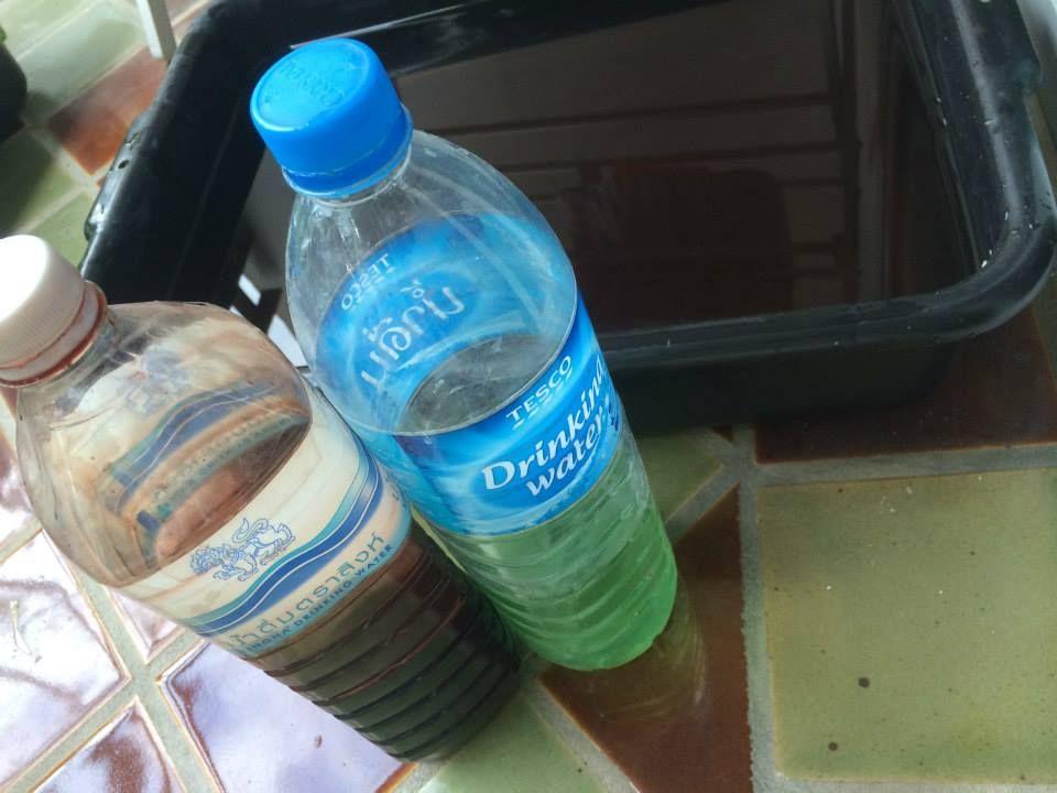 การปลูกผักไฮโดรน้ำนิ่ง การปลูกผักในกะละมัง การปลูกผักไฮโดรในกล่องโฟม มือใหม่หัดปลูกไฮโดร การปลูกไฮโดรแบบไม่ใช้ปั๊ม การปลูกผักไฮโดรแบบง่ายไม่ใช้ปั๊ม การปลูกผักไฮโดรบบไม่มีปั๊ม