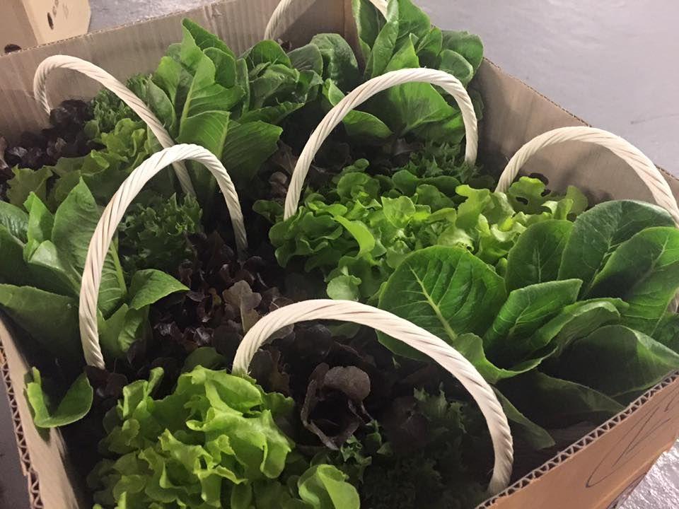 กระเช้าผัก กระเช้าของขวัญ กระเช้าผักผลไม้ กระเช้าสุขภาพ กระเช้าเพื่อสุขภาพ ของขวัญเพื่อสขภาพ ของขวัญสุขภาพดี