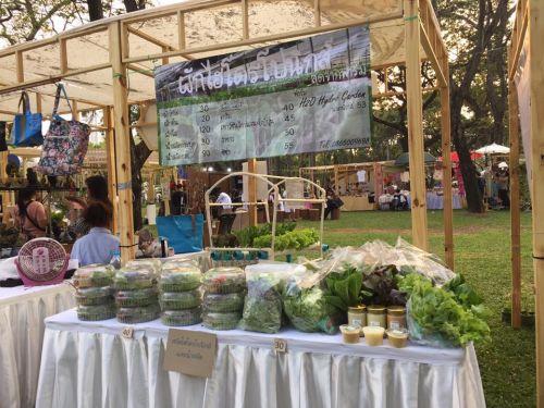 ปลูกผักไฮโดร ออกบูธ ออกงาน ไทยเที่ยวไทย เที่ยวเมืองไทย ออกงาน บูธผักไฮโดรโปนิกส์ กิจกรรม