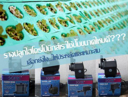 ปั๊มน้ำสำหรับปลูกผักไฮโดร ปั๊มตู้ปลา ปลูกผักไฮโดรโปนิกส์ ปั๊มน้ำแปลงปลูก
