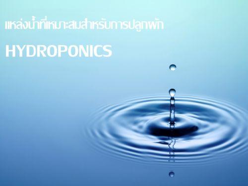 แหล่งที่มาน้ำ น้ำ ระบบไฮโดรโปนิกส์ แหล่งน้ำ ใช้น้ำอะไร hydroponics
