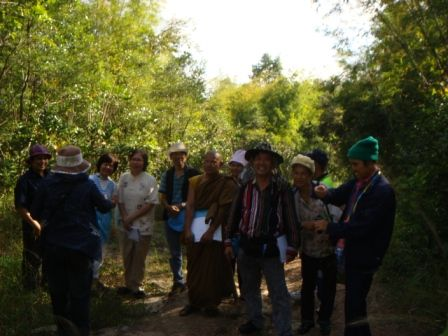 ต้น Tongkut ali หรือปลาไหลเผือก ที ป่าวัดประตูเขาชุมพล จังหวัดชัยภูมิ ในการเดินป่าดุสมุนไพร ของนักศึกษาแพทย์แผนไทยศูนย์ศึกษาและส่งเสริมสุขภาพแพทย์แผนไทย จังหวัดลพบุรี