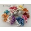 Mixed Half White Half 10 Rainbow Color Peony