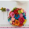Mixed Rainbow in 2 Sizes of Daisy flowers
