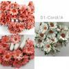 Mixed 2 Coral Tone - White Daisy Flowers (98/99/15)