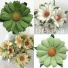 Mixed 2 Green/White/Cream Daisy Flowers (15/147/162/167)