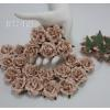 10 Nude Pink Roses Paper flowers