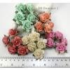 50 Mixed 5 Tone Craft Paper flowers (3/98/123/147450)
