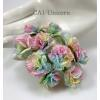 25 Special Dyed Unicorn Color Paper Carnation Flowers