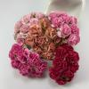 50 Mixed All Pink Carnation
