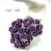 50 Solid Purple Carnation Flowers