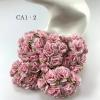 50 Solid Soft Pink Carnation Flowers