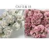 Mixed JUST Soft Pink and WHITE Carnation