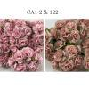 Mixed JSUT Soft Pink and Blush Carnation