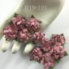 "50 Small 1"" Solid Dusty Pink May Roses"