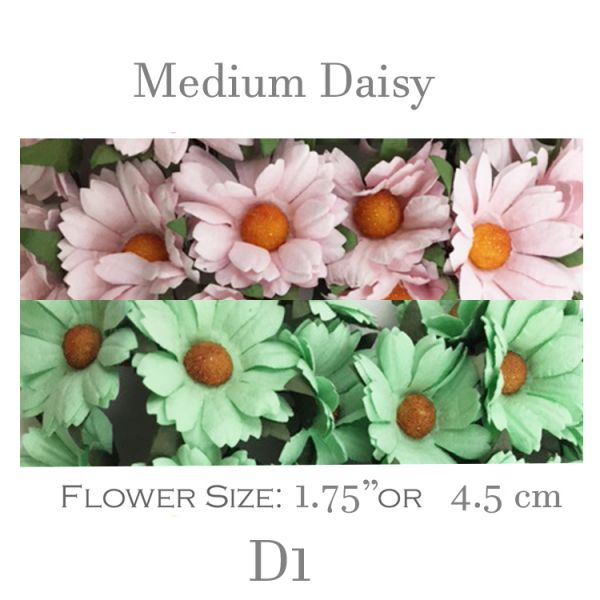 Medium Daisy Flowers D1
