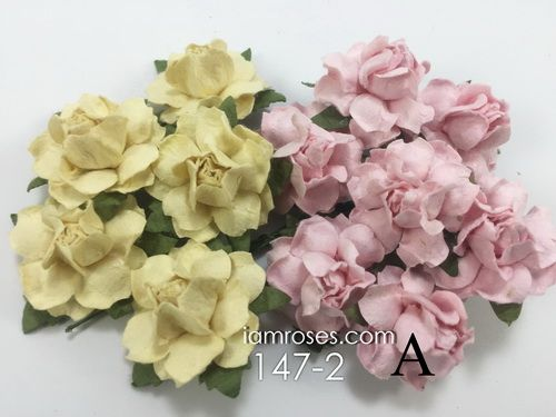 Paper flowers craft supply wholesale from thailand by i am roses receive a free extra flowers gift dozen of r19 mightylinksfo