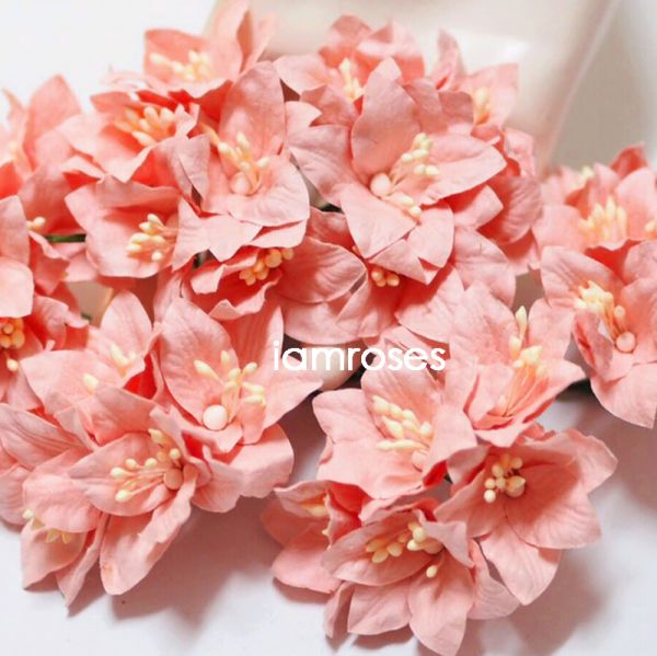 Pretty cut paper flowers pictures inspiration wedding dresses from paper flowers craft supply wholesale from thailand by i am roses mightylinksfo Gallery