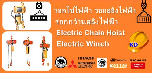 Electric Chain Hoist , Electric Winch , black bear , elephant