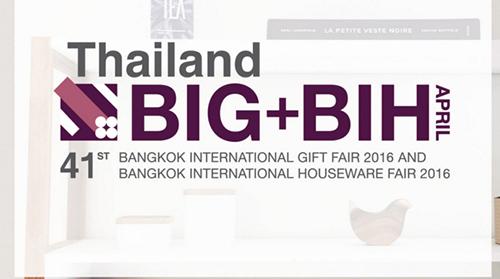 BIG&BIH2016