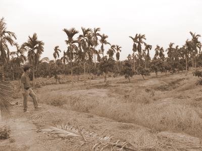 เที่ยวฉะเชิงเทรา,คุ้มวิมานดิน,ที่เที่ยวฉะเชิงเทรา,ฉะเชิงเทรา,ปั้นดิน,แหล่งท่องเที่ยวฉะเชิงเทรา