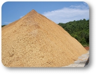 export Woodchip