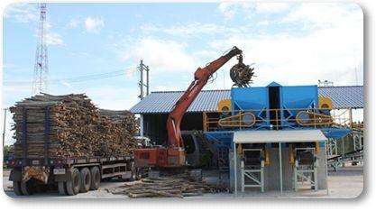 เทลเลอร์เต็มแล้วส่งไม้ท่อนยูคาลิปตัสเข้าสู่โรงงาน