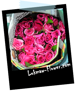 ดอกกุหลาบชมพู lukmaw-flower.com