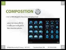 สมองแต่ละส่วนของมนุษย์