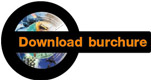 Download Burchure HIP C100