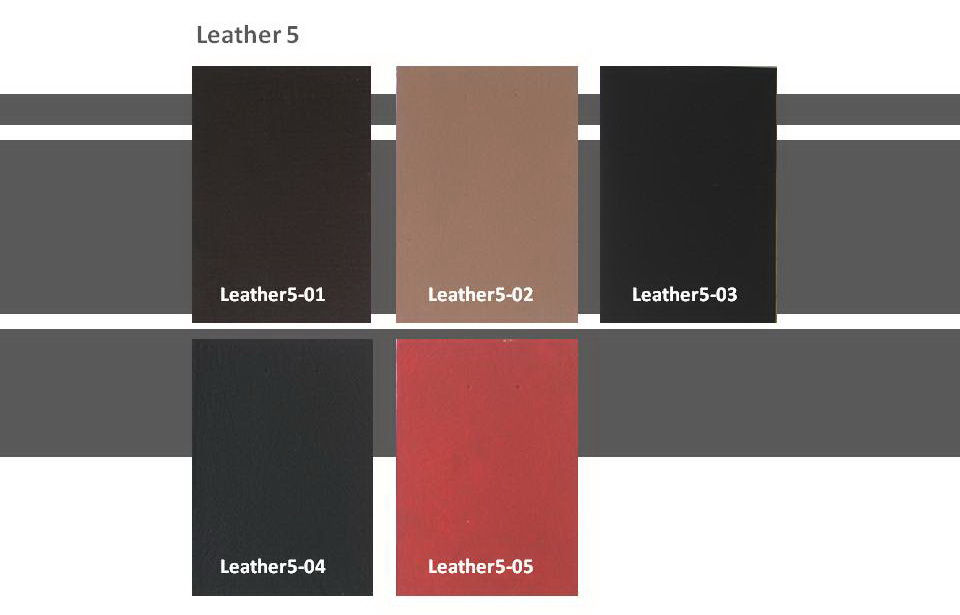 Leather Series Leather5