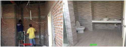 ToiletRenovation2