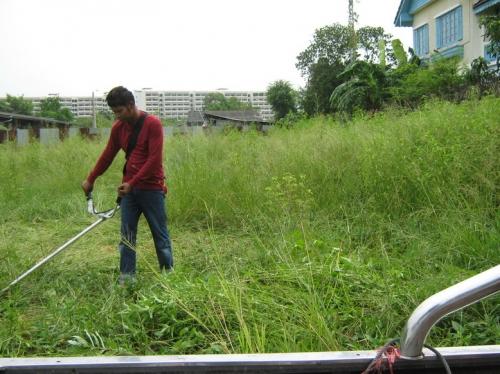 รับจ้างตัดหญ้า