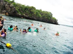 ดำน้ำเกาะสิงห์