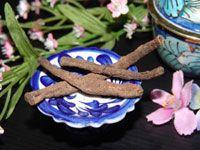 ว่านสากเหล็ก-ส่วนผสมของสูตรลับและสรรพคุณของยาสมุนไพรไทย-น้ำมันสมุนไพรไทยเพื่อสุขภาพ